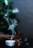 Julstilleben med tangerin Arkivfoton