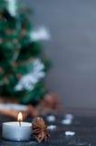 Julstilleben med tangerin Arkivbilder