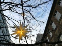 Julstjärna framme av blå himmel Fotografering för Bildbyråer