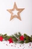 Julstjärna och granfilial med stjärnor Royaltyfri Foto