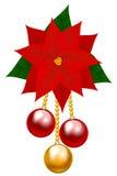 Julstjärnablomma Royaltyfri Foto