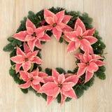 Julstjärnablommakrans Arkivfoto