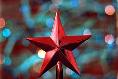 Julstjärnagarnering Royaltyfri Fotografi