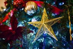 Julstjärnaprydnad på julgranen Fotografering för Bildbyråer