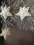 Julstjärnljus på silverfilial Royaltyfria Bilder