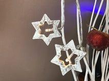 Julstjärnor och karamelläpple arkivbild