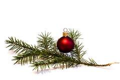 Julstruntsak med den unga prydliga trädfilialen Arkivbilder