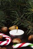 Julsymboler - strumpa, stearinljus, gran-träd, godisrotting, cin Fotografering för Bildbyråer