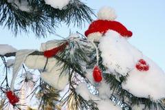 Jultomtenhatt på ett träd Arkivbilder