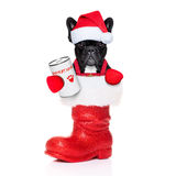 Jultomtenhund Royaltyfri Fotografi