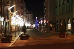 julträd i den Ostrava staden royaltyfri foto