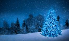 julträd i för bakgrundsidé för härlig sikt garnering för begrepp Royaltyfria Bilder