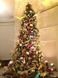 julträd i naturhistoriamuseum Royaltyfri Bild