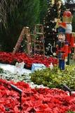 Julträdgård Royaltyfria Bilder
