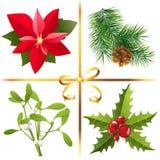 Julväxter stock illustrationer