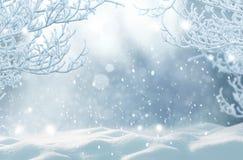 Julvinterlandskap med snö arkivbild