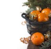 Julvykortmandariner, pälsträd och dekor Royaltyfri Bild
