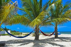 Hammocks on a secluded beach for relaxation. Stock Photos