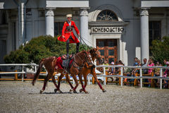July 25, 2015. Ceremonial presentation of the Kremlin Riding School on VDNH in Moscow. July 25, 2015. Ceremonial presentation of the Kremlin Riding School on Royalty Free Stock Photos