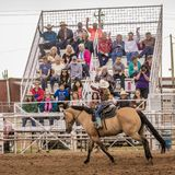 JULY 18, 2017 NORWOOD COLORADO - Audience waves to cowgirl during San Miguel Basin Rodeo, San.  Competition,  Animal. JULY 18, 2017 NORWOOD COLORADO - Audience Stock Photos