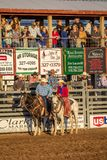JULY 22, 2017 NORWOOD COLORADO - Cowboys and cowgirls ride before viewing stand at San Miguel. Action,  competition Royalty Free Stock Photo