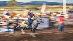 JULY 22, 2017 NORWOOD COLORADO - Cowboys ride and rope cattle during San Miguel Basin Rodeo, San.  Dirt,  rope Royalty Free Stock Image