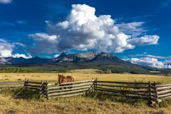 JULY 12, 2018, RIDGWAY COLORADO USA - Horse overlooks worm western fence in front of San Juan Mountains in Old West of Southwest C royalty free stock images
