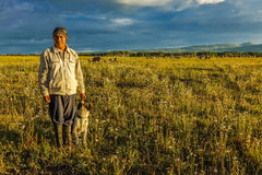 July 17, 2016 - Sheep herder with dog on Hastings Mesa near Ridgway, Colorado from truck stock photo