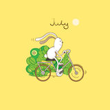 July. In the summer, in July midday, the hare slides by bicycle by the wood Royalty Free Stock Photos