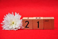 21 July on wooden blocks with a white daisy. On a red background royalty free stock image