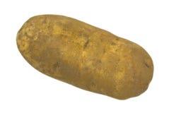 Jumbo Baking Potato Royalty Free Stock Photography
