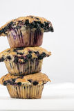 Jumbo blueberry muffins Stock Image