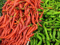 Jumbo Chile Peppers Royalty Free Stock Images