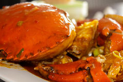 Jumbo crab and gravy on the plate Royalty Free Stock Photography
