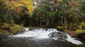 Jumbo Falls Waterfall. Loop features Jumbo Falls, a waterfall in Michigan's western Upper Peninsula stock video