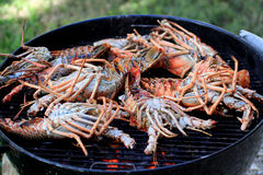 Jumbo Lobster on the Grill 2 Royalty Free Stock Images