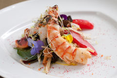 Jumbo prawn salad Stock Images