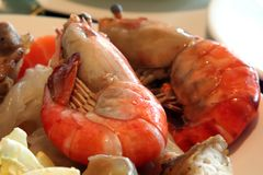 Jumbo prawns Royalty Free Stock Images
