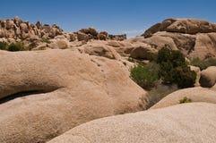 Jumbo Rocks Stock Photography