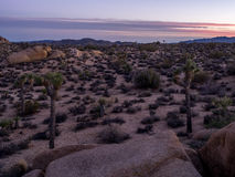 Jumbo Rocks at sunset in Joshua Tree National Park Royalty Free Stock Photos