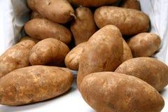 Jumbo Roodbruine Aardappels royalty-vrije stock afbeelding