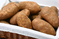 Jumbo Russet Potatoes in Basket Stock Image