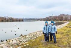 Jumeaux de cinq ans, en automne, canards proches sur la rue Photo libre de droits