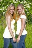Jumeaux en été Photographie stock