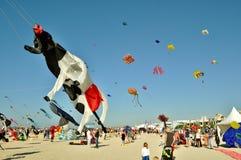 Jumeirah海滩飞行风筝 库存图片