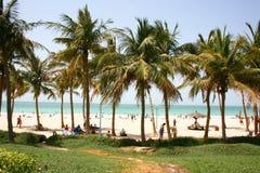 海滩jumeirah公园 图库摄影