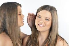 Jumelez les soeurs Image libre de droits