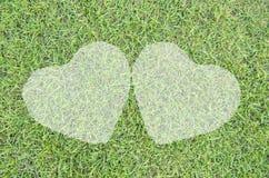 Jumelle le coeur de l'herbe Photos stock