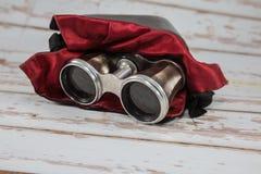 Jumelles argentées antiques avec le cas en cuir et le revêtement rouge de tissu Photo libre de droits