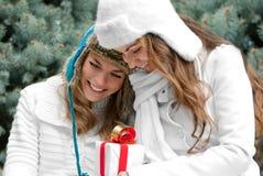Jumelles gaies de filles, en stationnement Photographie stock libre de droits